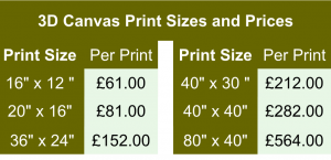 3D canvas pricing